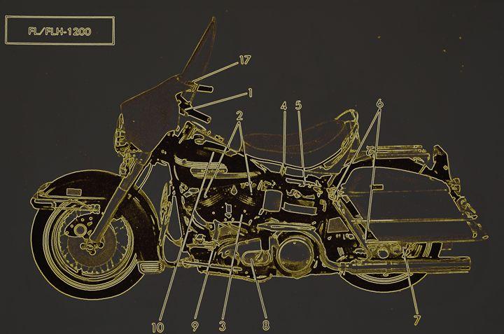 Harley Davidson X - Ethereal Organics...diane montana jansson