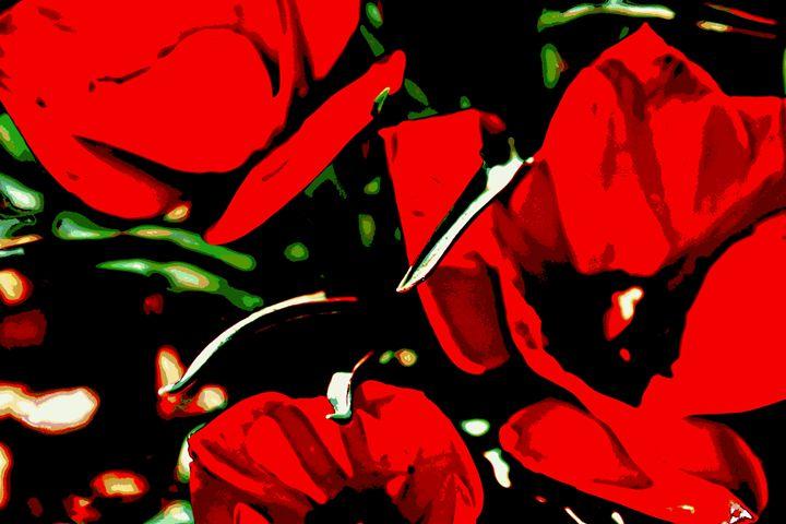 Red Tulip Tango - Ethereal Organics...diane montana jansson