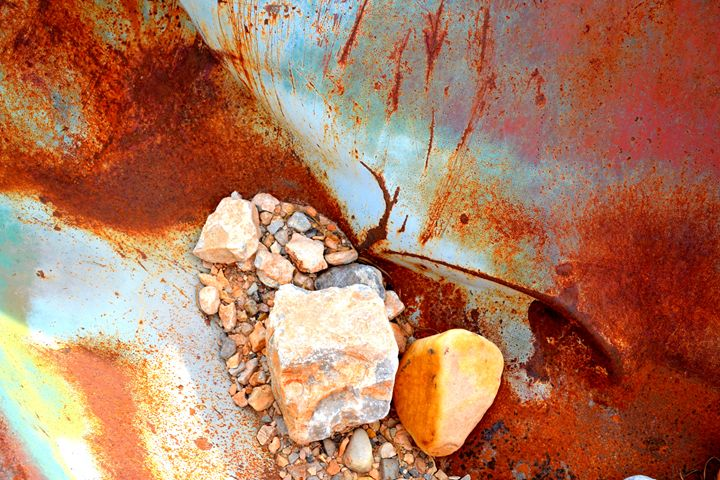 Desert Still Life II - Ethereal Organics...diane montana jansson