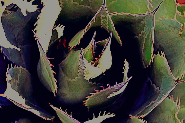 Painted Cactus II - Ethereal Organics...diane montana jansson