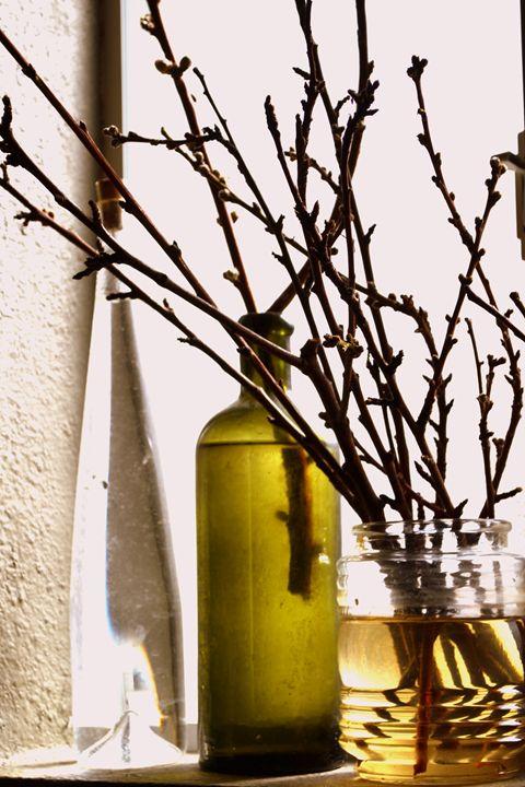 Winter Waiting - Ethereal Organics...diane montana jansson