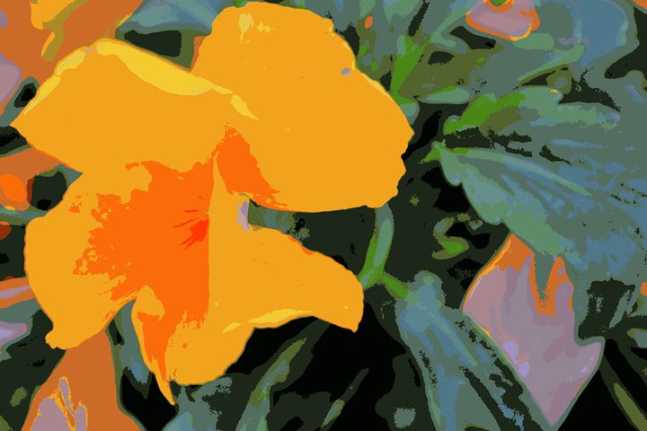 California Poppy - Ethereal Organics...diane montana jansson