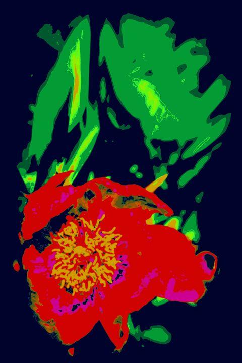 flying peonies - Ethereal Organics...diane montana jansson