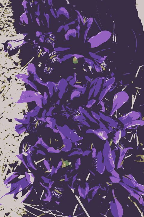 iris patch - Ethereal Organics...diane montana jansson