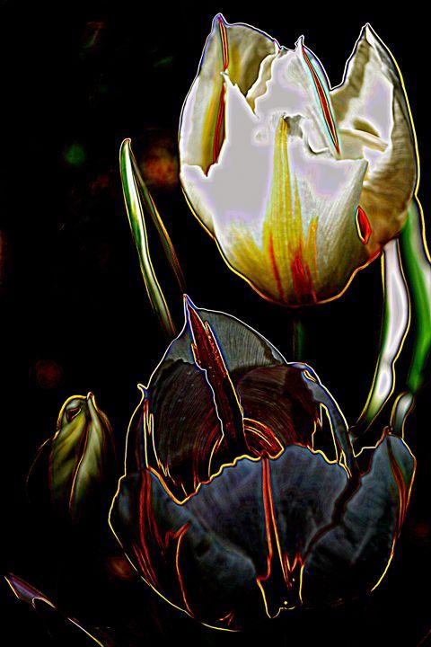 Satin Petals - Ethereal Organics...diane montana jansson
