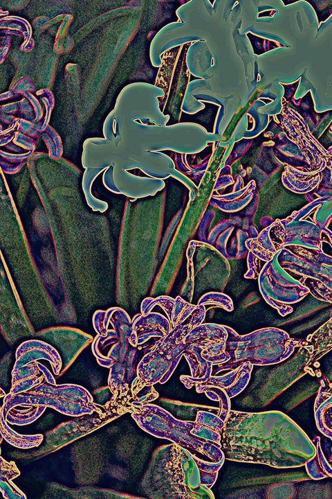 narcissus - Ethereal Organics...diane montana jansson