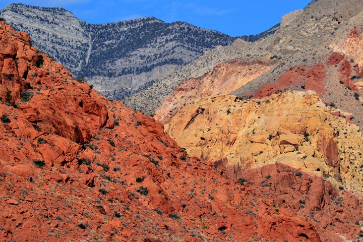Red Rock Canyon 1 - Ethereal Organics...diane montana jansson