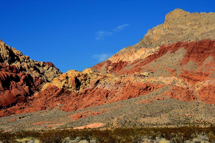 Red Rock Canyon 4 - Ethereal Organics...diane montana jansson