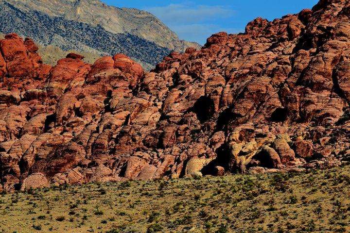 Red Rock Canyon 8 - Ethereal Organics...diane montana jansson