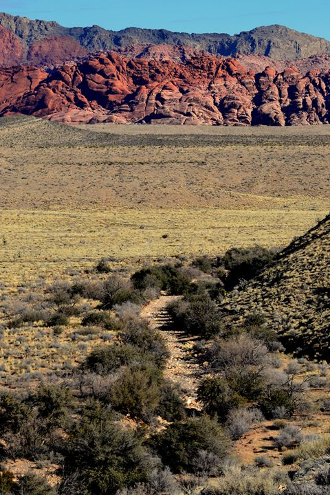 Red Rock Canyon 11 - Ethereal Organics...diane montana jansson