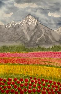 Kashmir Tulip garden