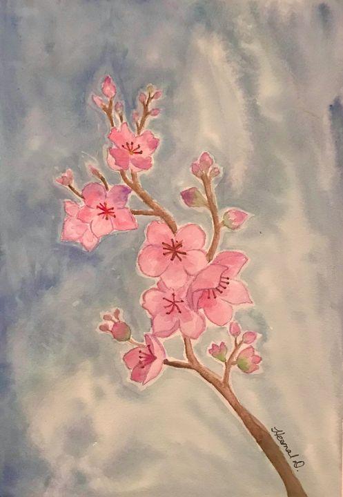 Cherry Blossoms. - Heemal D
