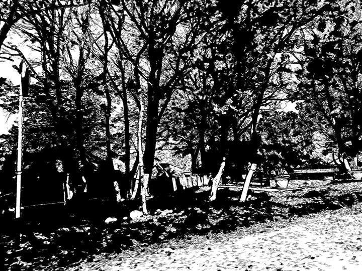 Manifestations of Eternity, 1-79 - Grigori Grabovoi