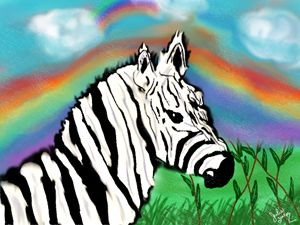 Zebra Fields