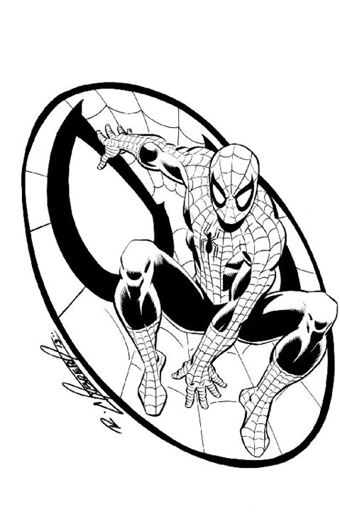 Spiderman Hold - Ralph Cabrera