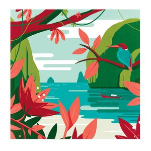 Tropical islands - Marco Baccioli