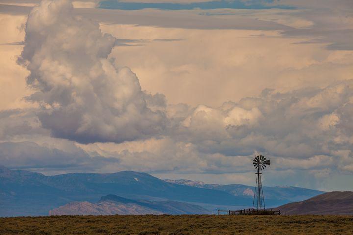 High mountain pasture - Scott McKay Photography