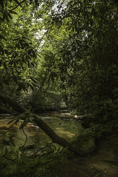 Blue mountain stream - Scott McKay Photography