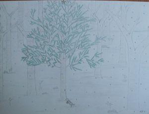 A Meereck's Xmas Tree 16