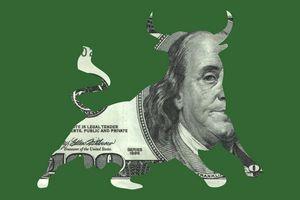 $100 Bill Bull