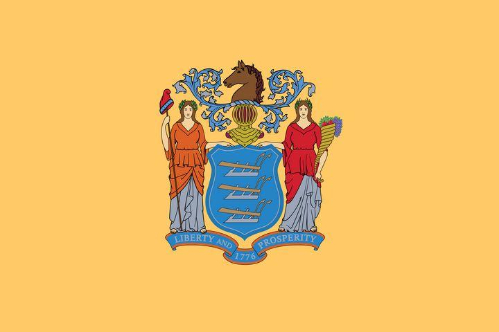 New Jersey State Flag Art - Brian Kindsvater Art