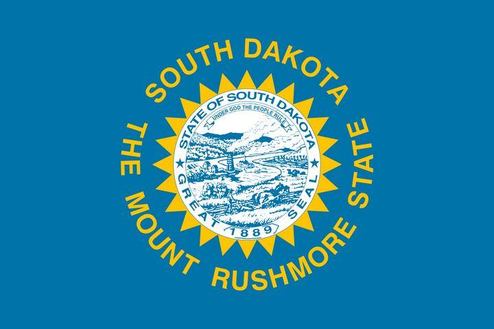 South Dakota State Flag Art - Brian Kindsvater Art