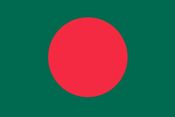 Bangladesh Country Flag Art - Brian Kindsvater Art