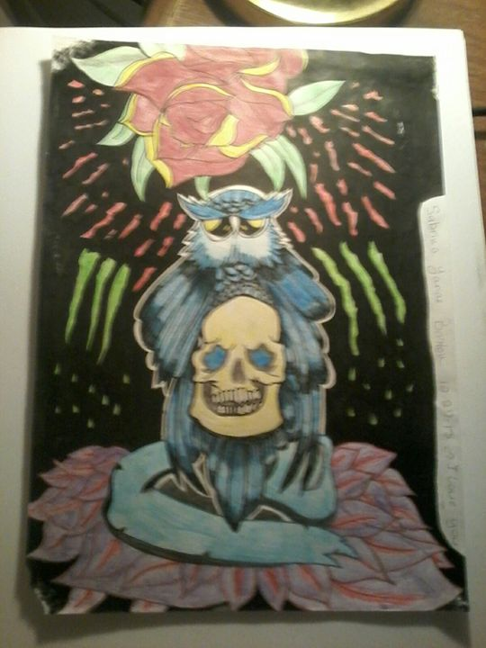Skull and owl design with color - Sabrina's paintings