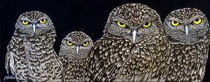 The Committee,  Burrowing Owls