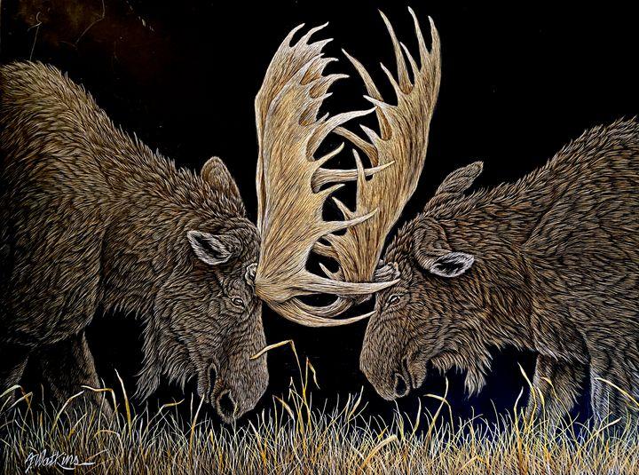 When Push Comes To Shove, Moose - Jwatkins