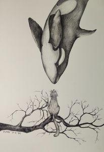 Orca & Cat