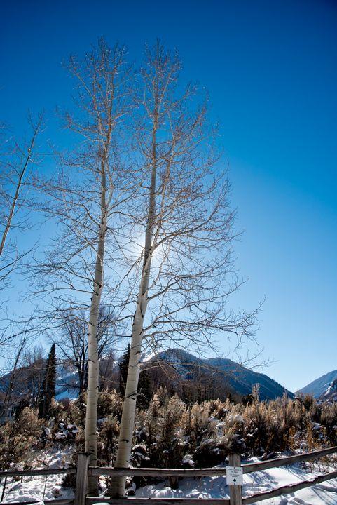 Winter in Aspen - J Mendoza