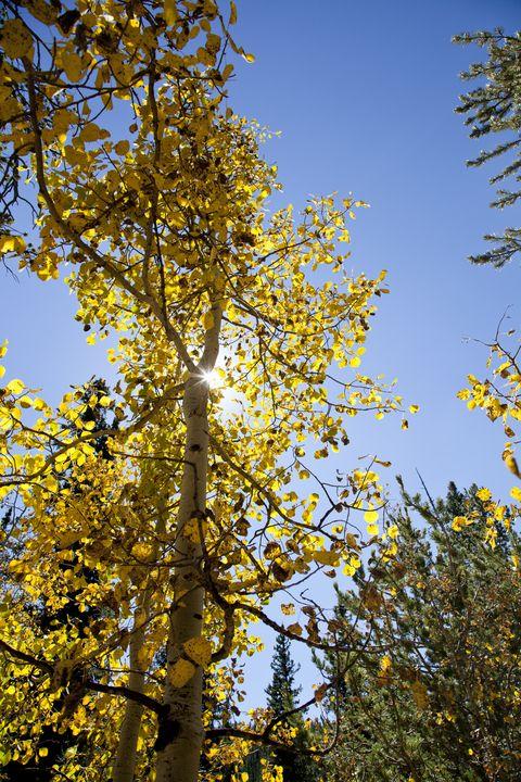 Crags Hike in Fall - J Mendoza