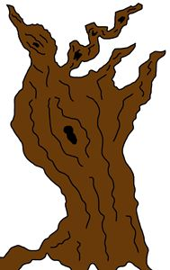 The Old Gnarly Tree