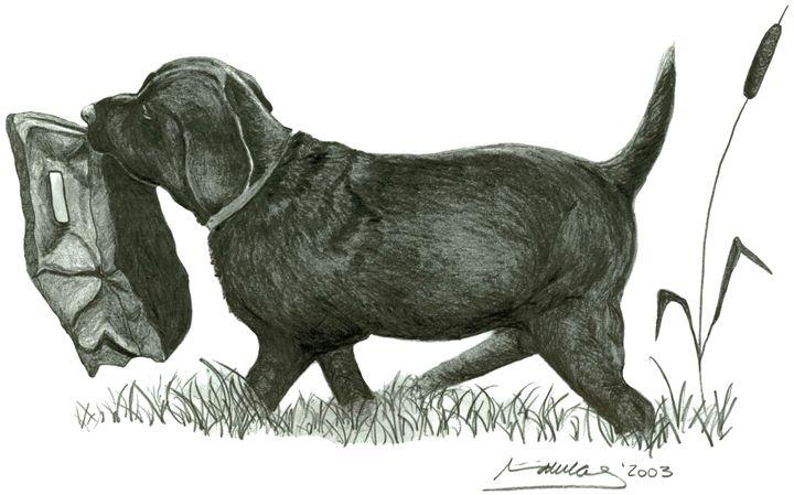 Black Lab Puppy - Miriam Mas Art