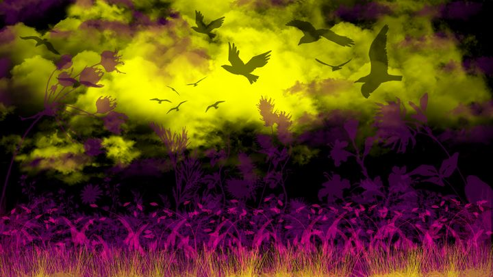 Black Birds and a Yellow Sky - Exiled Emotion Art