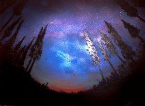 Starry night I