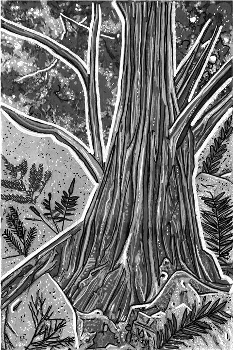 Fossils - Evan Schwartz Art
