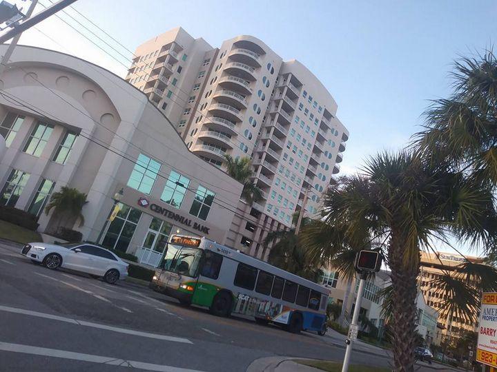 Downtown Sarasota - liannas photography
