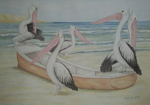 Pelican Pirates