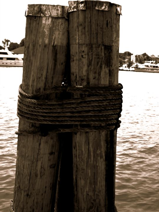 On the Dock - Musing Creative