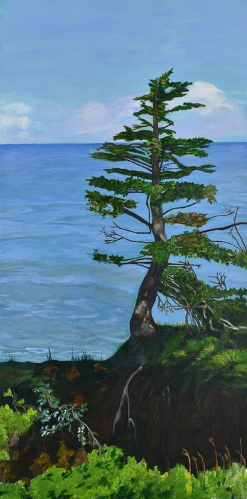 Lone Tree on Fundy Coast - Paintings by Sheila Murphy