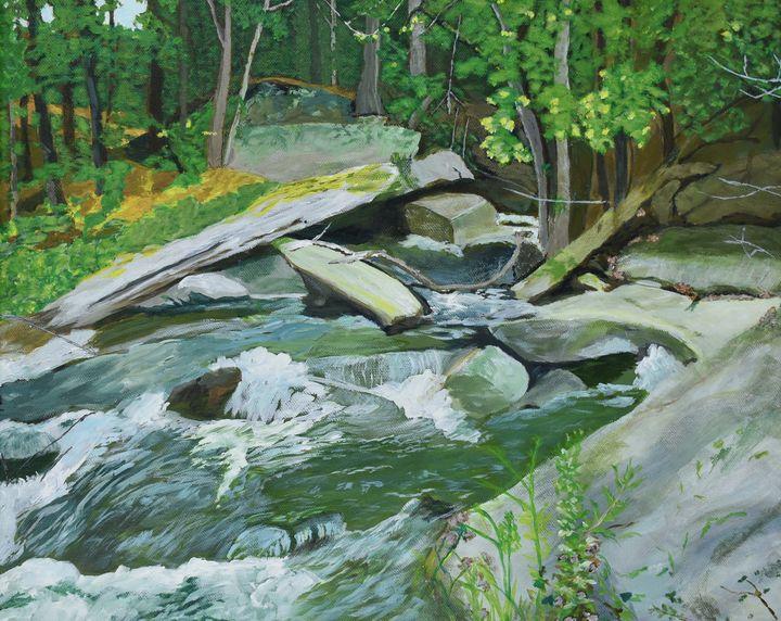 Rapids, Blakeney Trail - Paintings by Sheila Murphy