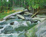 Rapids, Blakeney Trail