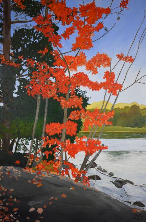 Blakeney Trail in Autumn - Paintings by Sheila Murphy