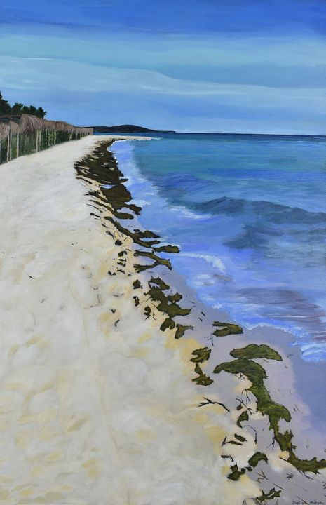 Beach, Cayo Guillermo - Paintings by Sheila Murphy