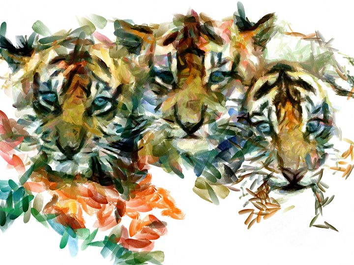 Tiger Cubs - Gavart