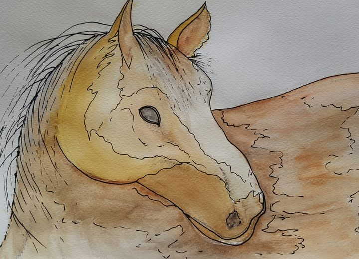 Horses head - Carol @ Centon