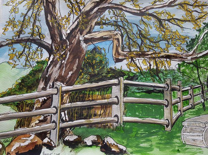 Tree over the fence - Carol @ Centon
