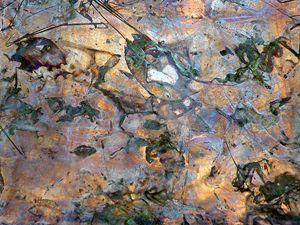 Copper Impressions.